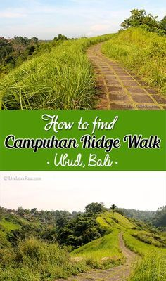 How to find Campuhan Ridge walk and hike in Ubud, Bali, by Live Love Raw: http://www.liveloveraw.com/campuhan-ridge-hike-ubud-bali/