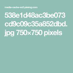 538e1d48ac3be073cd9c09c35a852dbd.jpg 750×750 pixels
