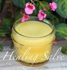 All Purpose Healing Salve & Recipe