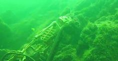 Human Skeletons Wearing Sunglasses Found Living It Up In The Colorado River