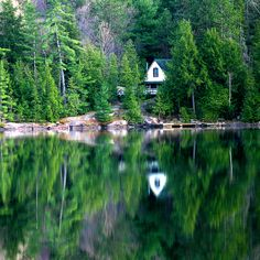 Cabin in the woods Photographer John Crowe