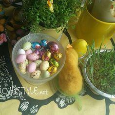 KOTI&SISUSTUS. KEITTIÖ PÄÄSIÄINEN.Ihanaa Kevät&Pääsiäinen. Kissat turmelivat rae ruohon, Otin Kiaaojwn OHRAN käyttöön #koti#perhe #sisustus #herkut #ohra #värikästä #koristelu #pääsiäinen ❤☺
