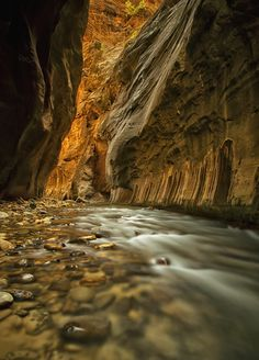 """Deep in """"The Narrows"""" hike at Zion. It's definitely a very beautiful site to see, early morning light glows in the massive canyon walls while the crystal and cold waters of the Virgin River continues the erosion process. Thank you all for your support, I appreciate it very much!"""