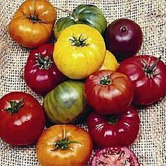 heirloom tomatoes..yummmmmm