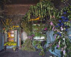 lisa waud, the flower house, detroit, repurposed home, flower farm, reclaim detroit, gardening, flower art