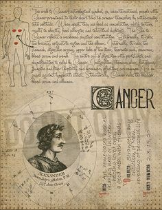 7 pages set about CANCER Astrological Sign Correspondences. They are an ideal addition to your own Wicca Book of Shadows. Astrology Zodiac, Astrology Signs, Astrological Sign, Zodiac Star Signs, My Zodiac Sign, Zodiac Planets, Hogwarts, Wiccan Spells, Practical Magic
