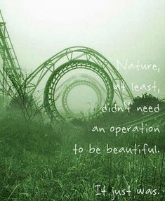 Think aloud - what does this quote mean? Why doesn't nature need an operation? What examples or non-examples in the book can you find the relate to the quote?