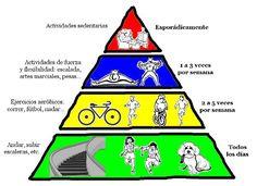 La Pirámide de la Actividad Física | Sentirse bien es facilisimo.com