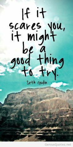 Seth Godin quote image