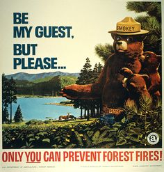 Campfire Safety -- T