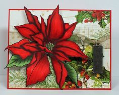 Stampendous CAS Christmas Poinsettia by leadonna24 - Cards and Paper Crafts at Splitcoaststampers
