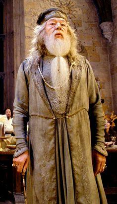 Professor Albus Percival Wulfric Brian Dumbledore (Michael Gambon) - Harry Potter