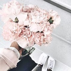"""noirettediary: """"fluhters: """" azuhrite: """" fluhters: """" simplixe: """" imbueh: """"Apply to my faves """" s i m p l e """" f l u h t e r s """" want a promo? send me """":)"""" for more info """" Lazy Angels 