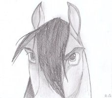 Spirit Stallion 4 by alvija