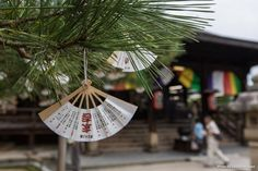 Los omikuji o papelitos de la fortuna que luego se atan en pinos, explicado con todo lujo de detalles.