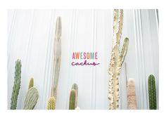 Awesome Cacti - via Elly Yap