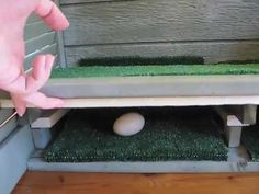 roll away nesting boxes