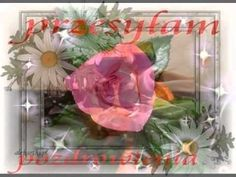 ♫♥♥♫ NAJPIĘKNIEJSZE RÓŻE ODE MNIE DLA CIEBIE ♫♥♥♫ - YouTube King Pin, Ale, Glass Vase, Invitations, Youtube, Plants, Decor, Musica, Decoration