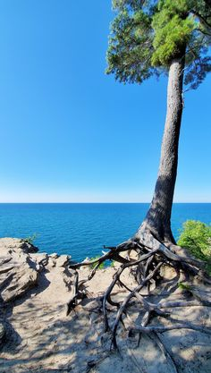 best hikes in pictured rocks. michigan hiking trails. things to do in michigan. upper peninsula, up north. midwest road trip. lake superior. national park vacation. pictured rocks national lakeshore. great lakes vacation. adventure vacation ideas. summer road trip. usa travel destinations. united states. america. Vacation Places, Vacation Trips, Vacation Ideas, Michigan Vacations, Michigan Travel, States America, United States, North Country Trail, Pictured Rocks National Lakeshore