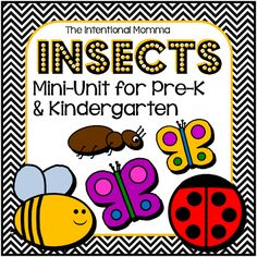 19-page file features cute insects and bugs and includes math, language, worksheets, and coloring sheets and is a great supplement to your insect thematic units! Original clip art includes bumblebees, ladybugs, ants, and butterflies, and students will learn simple insect facts in this mini-unit. This is a great resource for morning work or classroom centers for pre-k, preschool, kindergarten, and/or homeschool. $