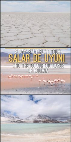 The best tour in Bolivia - Salar de Uyuni and the Colourful Lakes. Read More: http://mismatchedpassports.com/2016/02/04/3-day-salt-flat-tour-salar-de-uyuni-colourful-lakes-bolivia/ #travel #Bolivia