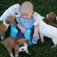 "Photo found Google.com ""We love babies and puppies because as mammals ourselves, we respond to large heads on small bodies.  This triggers a nurturing response.  Loosely paraphrasing our dear departed Carl Sagan"" Lynn Hand"
