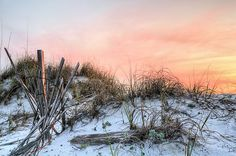 in the dunes of pensacola beach,pensacola,pensacola beach,pensacola florida,pensacola fl,sand dune,sand dunes,fence,fences,beach fence,sea oats,orange,pink,sunset,sunrise,sunrises,old beach fence,wood beach fences,escambia county,santa rosa island,gulf of mexico,gulf beaches,the emerald coast,the florida panhandle,panhandle beaches,gulf beaches,florida beaches,jc findley,james c findley,nw florida,north west florida,nw fl,sands,pc beach,pcb,city limits