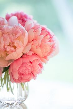 pink peonies: Jessica Holden Photography Love the background color w/ the floral colors!