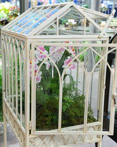 Glass terrarium-like structures, wardian cases were created in the by Dr. Nathaniel Bagshaw Ward to allow for the overseas transportation of delicate plant species. Best Greenhouse, Indoor Greenhouse, Indoor Garden, Indoor Plants, Home And Garden, Greenhouse Ideas, Pallet Greenhouse, Underground Greenhouse, Air Plants