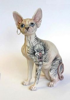 There are pros and cons on tattooing a Sphynx cat. Below are some of them: Pros Some people consider tattooing a Sphynx cat as beautifu. Tattoo On, Cat Tattoo, Tattoo Animal, Cool Cats, Scary Cat, Sphinx Cat, Cat Behavior, Cat Sleeping, Beautiful Cats