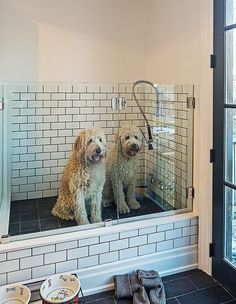 5 benefits of having a dog wash station in your home benefit mudroom wash station the best plan when building a new house for anyone who has or plans on having big dogs dream space this dog wash will be in the solutioingenieria Gallery
