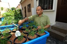 Aquaponics: The modern solution to residential farming