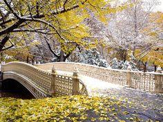 belas paisagens DE OUTONO papel de parede | Papel de parede Early Snowfall, Central Park, New York, fotos grátis ...