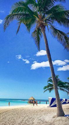 Cruises to Perfect Day at CocoCay, Bahamas Cruise Travel, Cruise Vacation, Dream Vacations, Cruise Tips, Best Cruise Ships, Disney Cruise Ships, Eleuthera Bahamas, Bahamas Cruise, Navigator Of The Seas