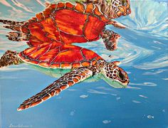 Absolutely stunning sea turtle painting by Palermo. 10% of profits go to the South Carolina Aquarium's Sea Turtle Rescue Program.