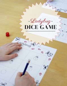 DIY Ladybug Dice Game... A Fun math game for the whole family.