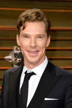 Benedict Cumberbatch With Kittens