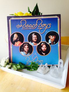 The Beach Boys - 15 Big Ones - Vinyl LP Record