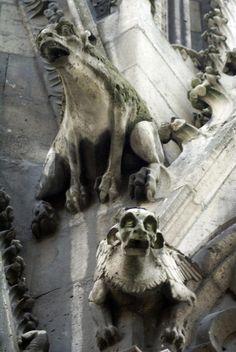 Gargoyles, Notre Dame...ra