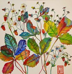 sofia perina miller art | New painting.Wild Strawberry. Art by Sofía Perina Miller