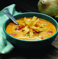 creamy chicken enchilada soup - my friends mom makes this and we all get a terrible stomach ache after because WE CAN'T STOP EATING IT