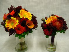 Rich fall wedding bouquets of pin cushion protea, gerbera daisies, safari sunset, mini calla lilies, roses and dahlias