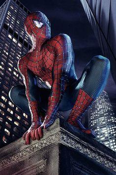 pdc_spiderman.jpg (812×1223)