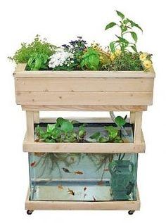 at home small scale aquaponics | Small-scale Domestic unit