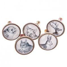 Sass & Belle Hare Drawer Knob