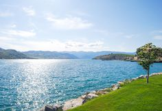 Lake Chelan: I call this lake our own little piece of paradise.  It really is a gem of a place to live by. And yes... the water really is that blue!