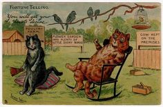 Fortune Telling Cats