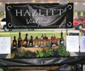 Wine Tasting Tent at the Naples Grape Festival.