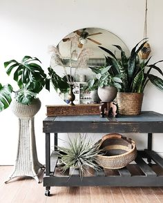 The pop-up shop over at is full of light, beauty and greenery today. Bamboo Ladders, White Wicker, Pop Up Shops, Garden Styles, Comfort Zone, Apartment Living, Home Decor Inspiration, Seasonal Decor, Interior And Exterior
