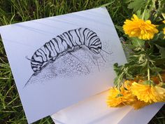 Blank Notecard, hand drawn caterpillar, gift for grandma, Greeting Card, Birthday Card Nature artwork, card for daughter, pen and ink dots by JensCreativeStore on Etsy https://www.etsy.com/listing/482691743/blank-notecard-hand-drawn-caterpillar